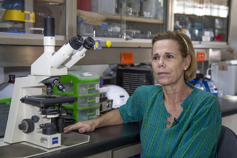 Dra. Fafutis dando entrevista en el laboratorio