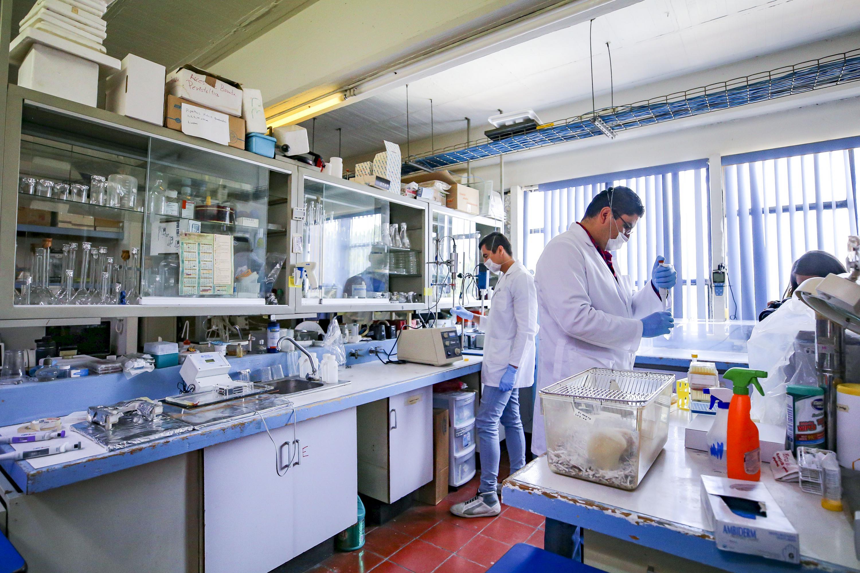 Investigadores trabajando en el Laboratorio