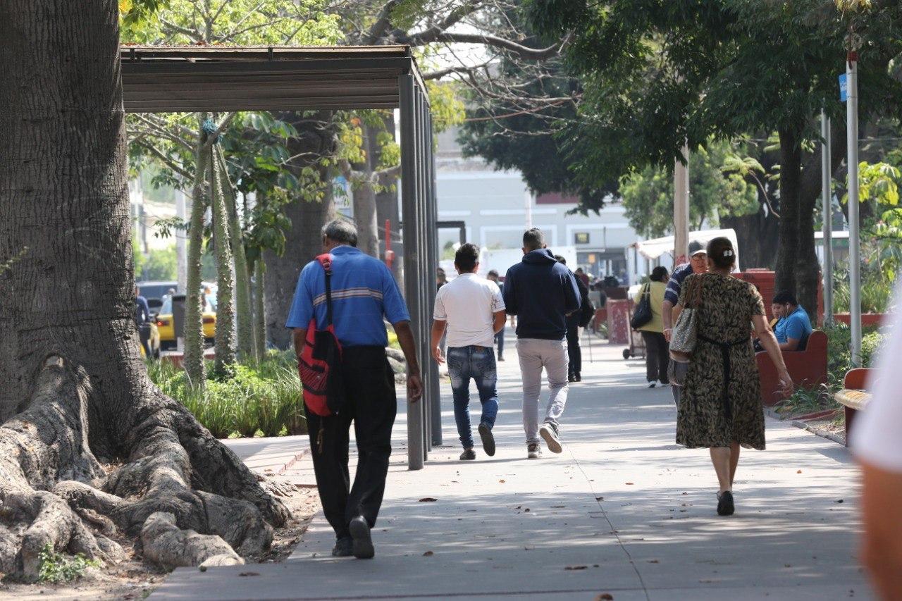 Personas de espaldas caminando por una banqueta en la vía pública