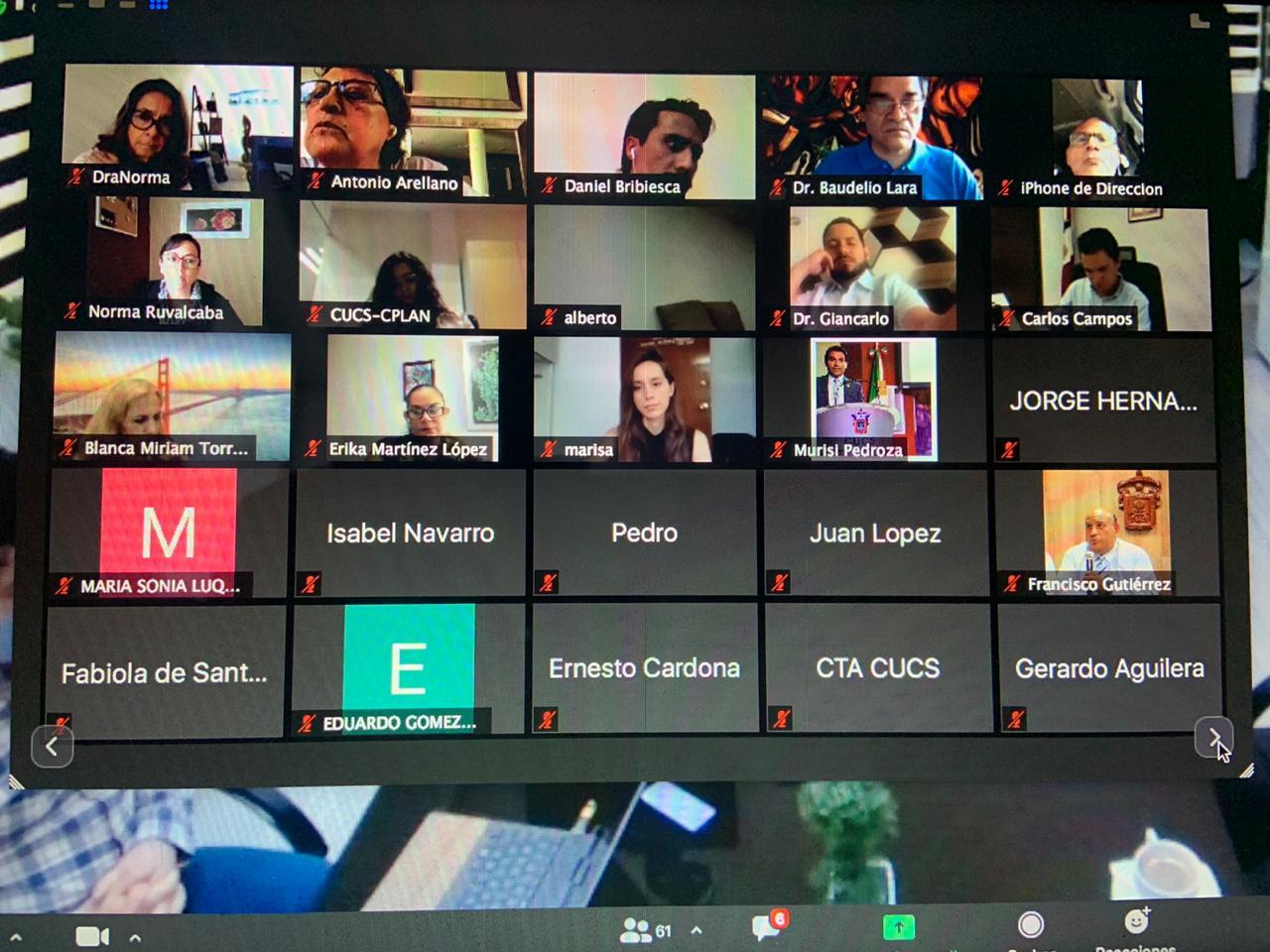 Captura de pantalla con más participantes en reunión virtual
