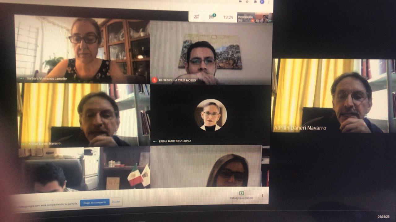 Captura de pantalla de reunión con coordinadores