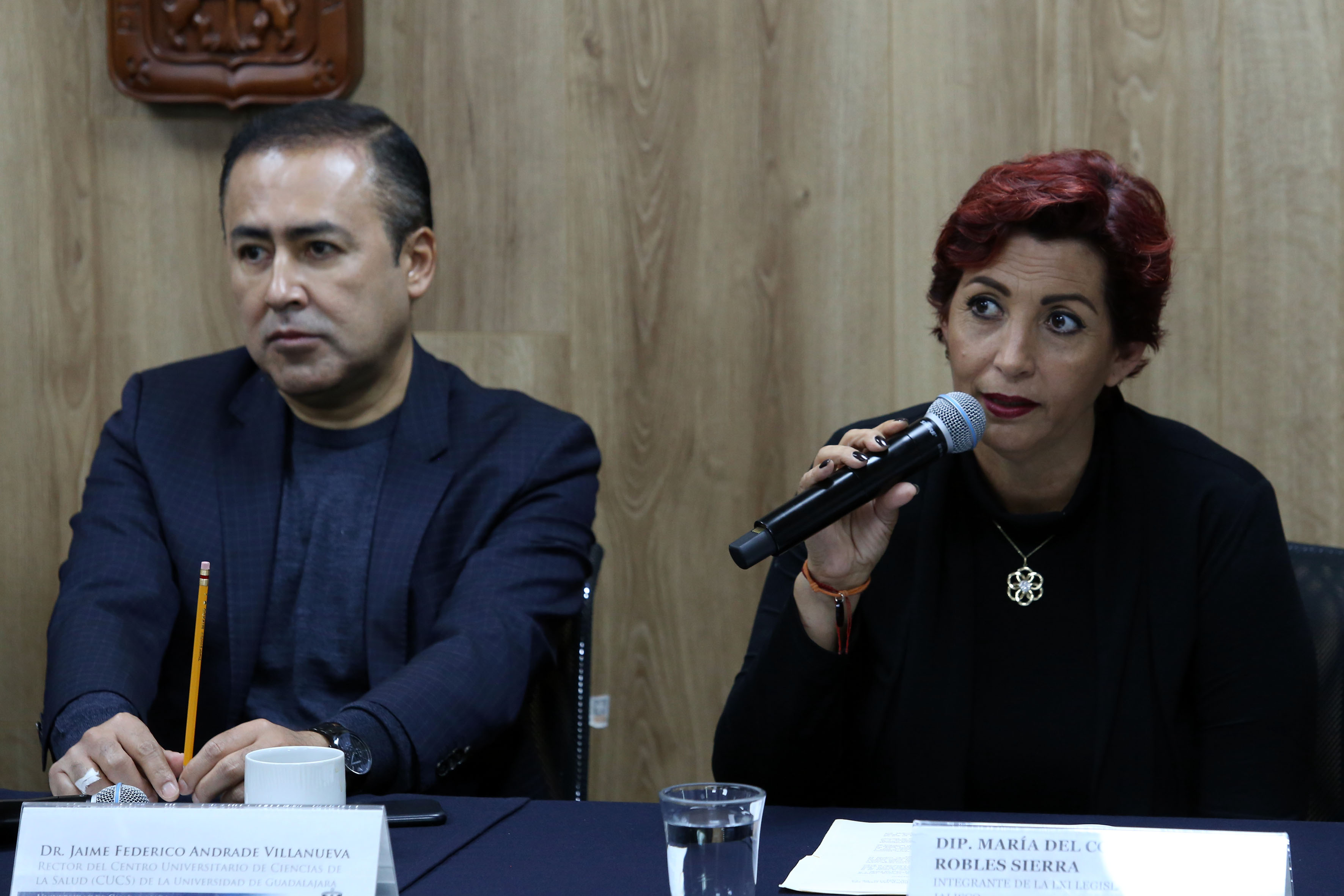 Diputada Consuelo Robles haciendo uso de la voz en rueda de prensa