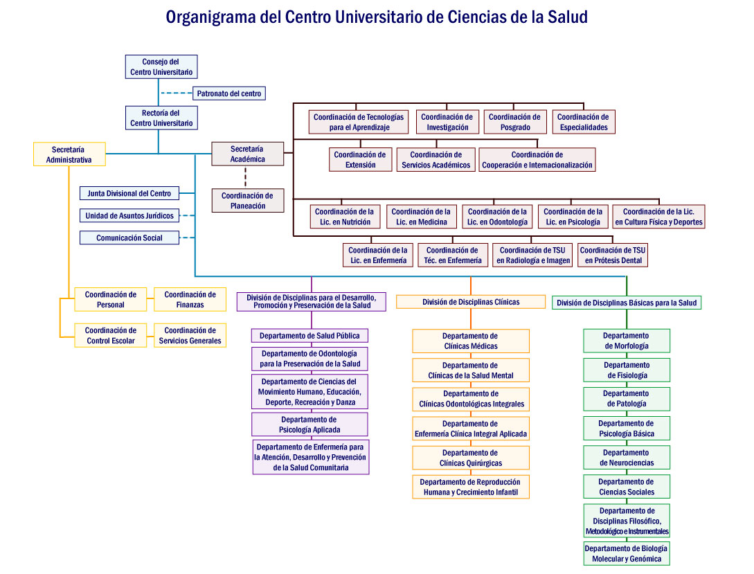 Organigrama Centro Universitario De Ciencias De La Salud