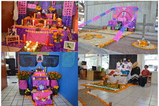 Creatividad Y Originalidad En Los Altares De Muertos Centro