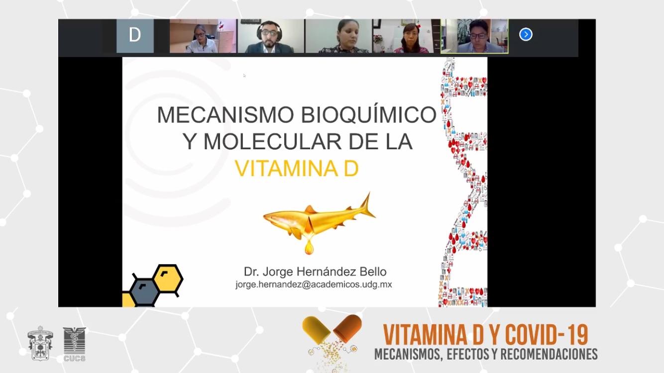 Captura de pantalla de una diapositiva con las imágenes de los participantes en la parte superior