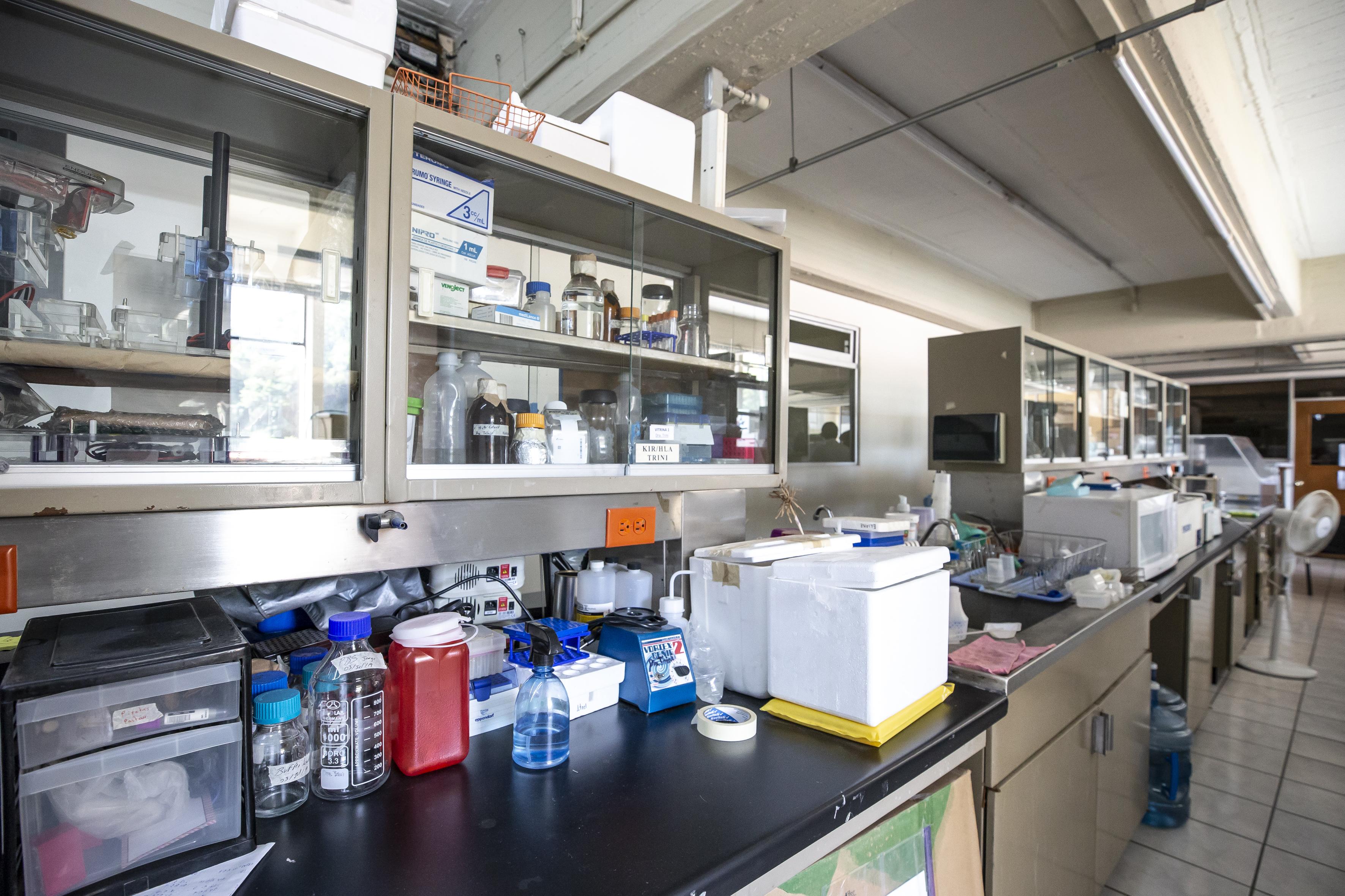 Imagen de una mesa de trabajo en el laboratorio