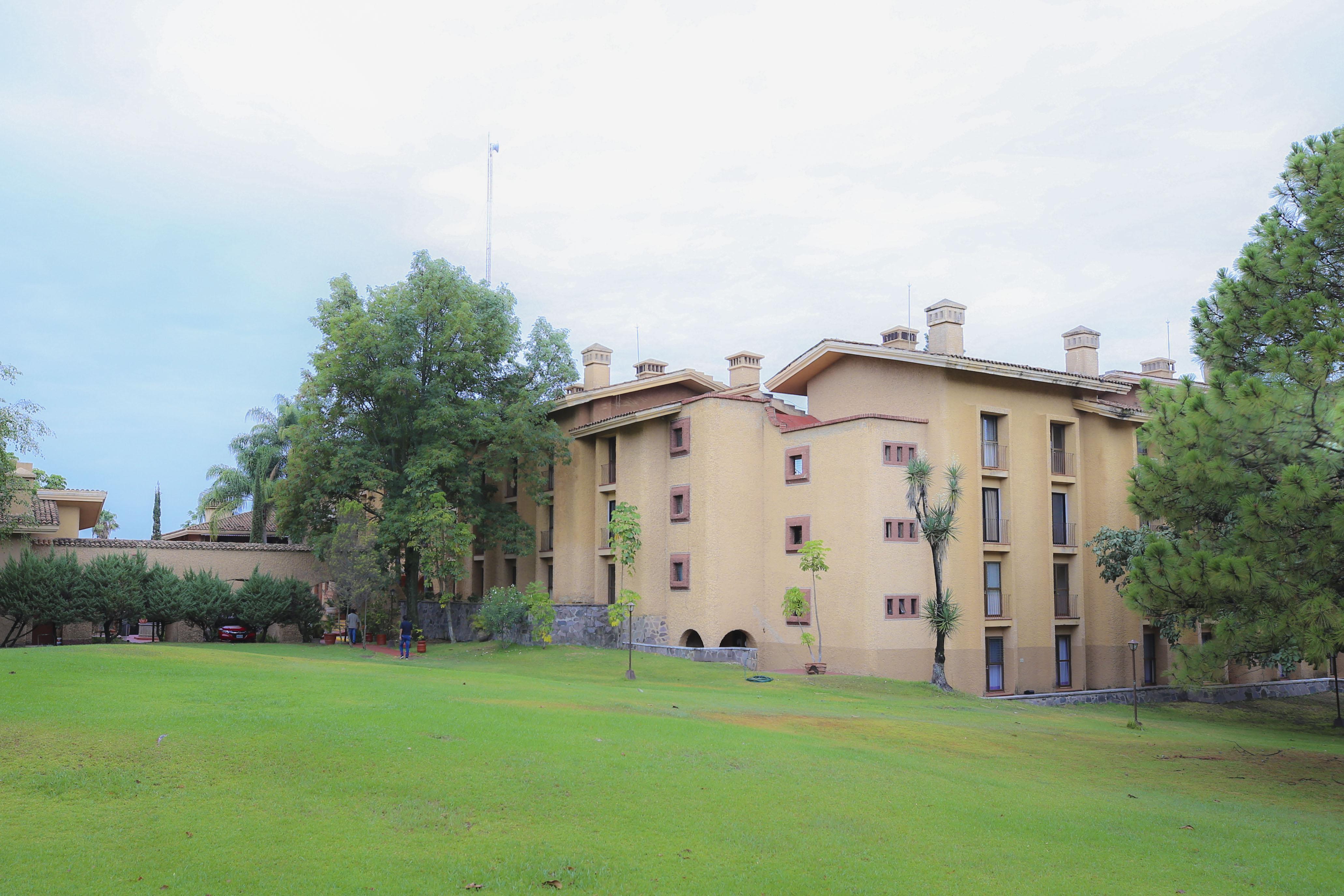 Área de jardín a los alrededores del hotel