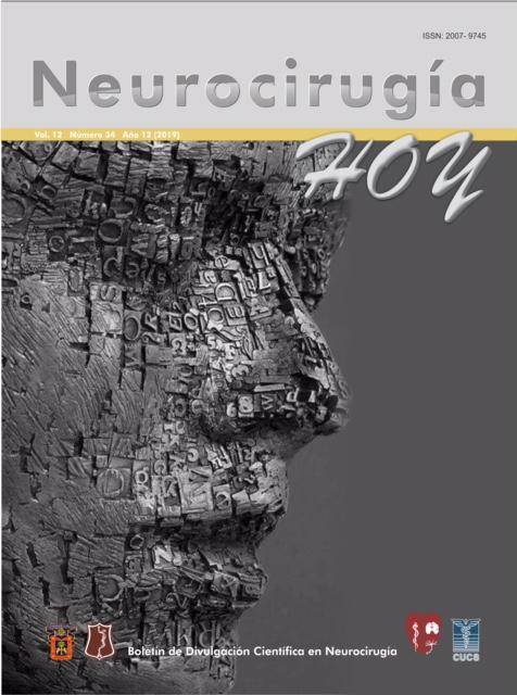 Portada de la revista Neurocirugía Hoy
