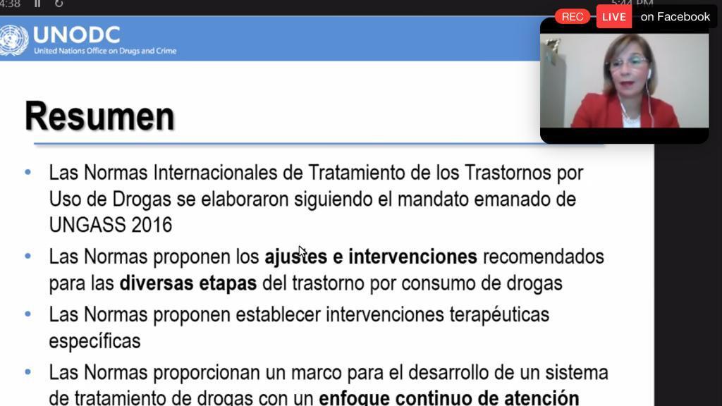 Captura de pantalla de la conferensista, al fondo diapositiva RESUMEN