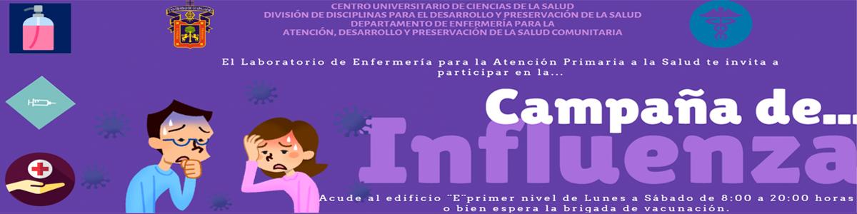 Campaña de… Influenza