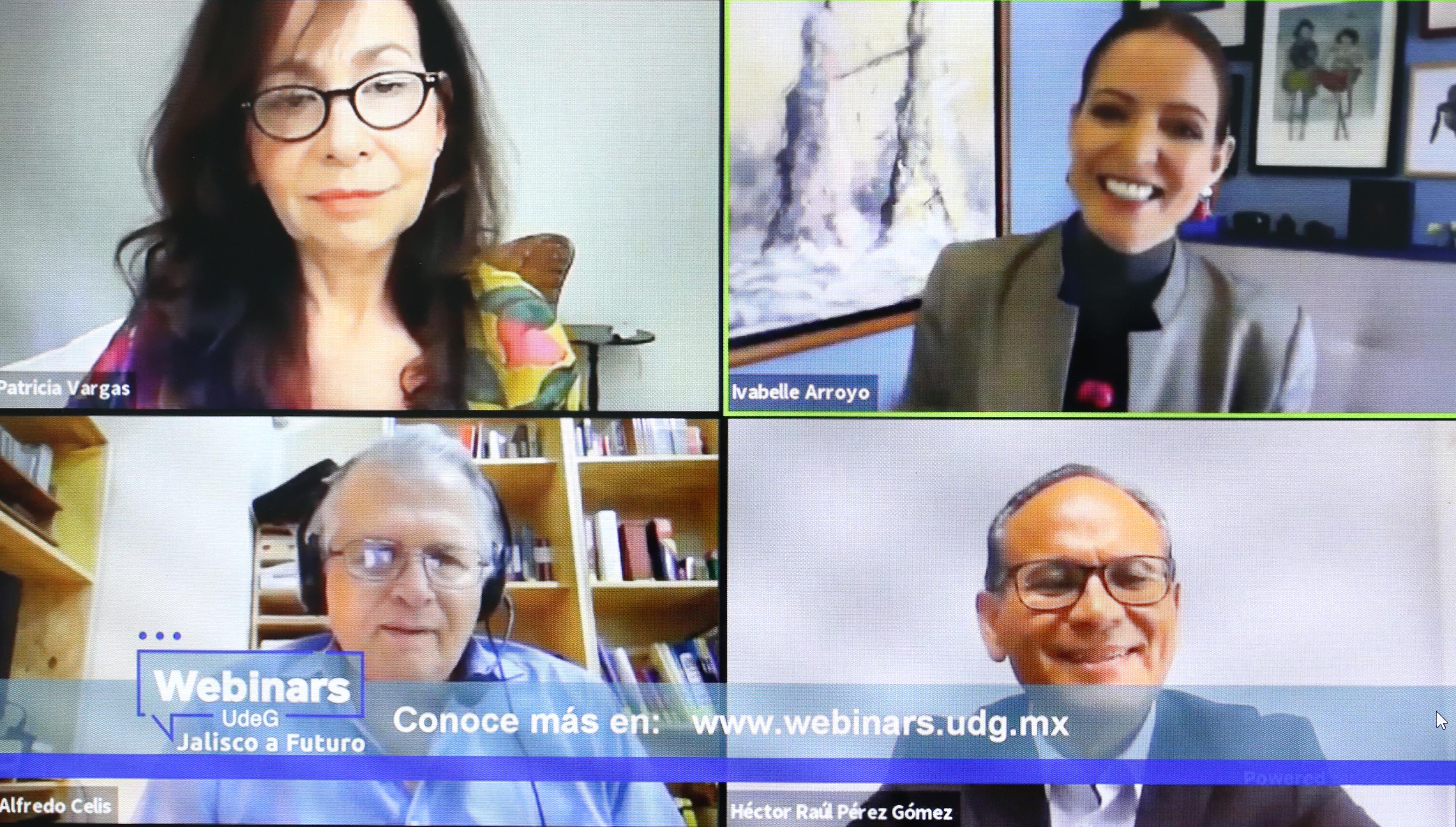 Participantes en el Webinar, imagen tomada de la transmisión por Zoom